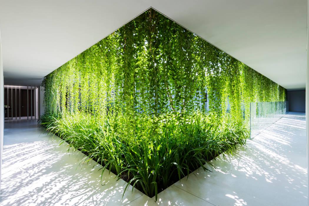 商業空間 by MIA Design Studio, 現代風