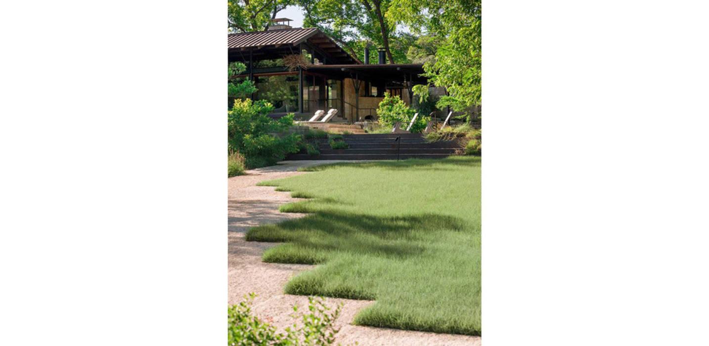 Jardin natur moderner garten von ecologic city garden - paul ...