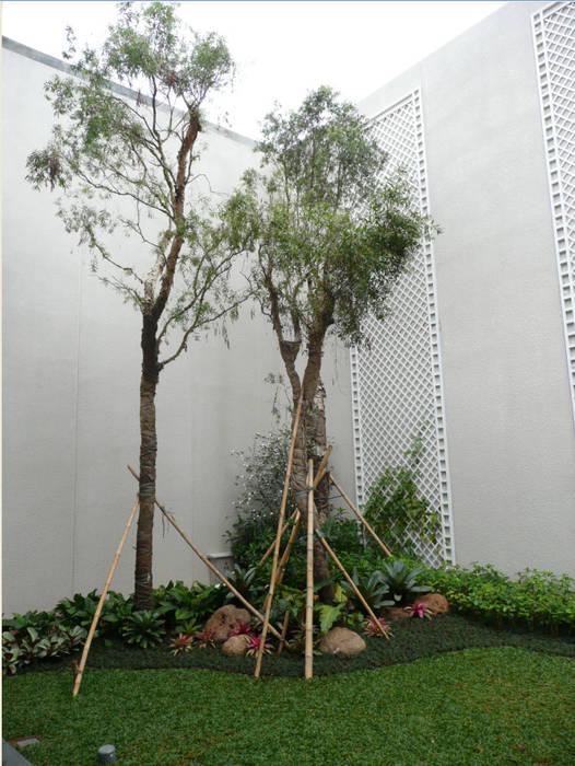 Jardin moderne par sony architect studio Moderne