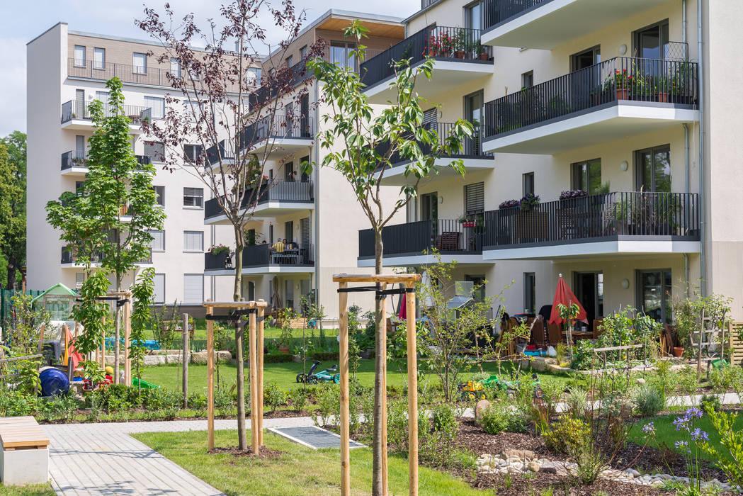Holzpalais Dresden Gartenansicht:  Mehrfamilienhaus von MBR Architekten PartG mbB