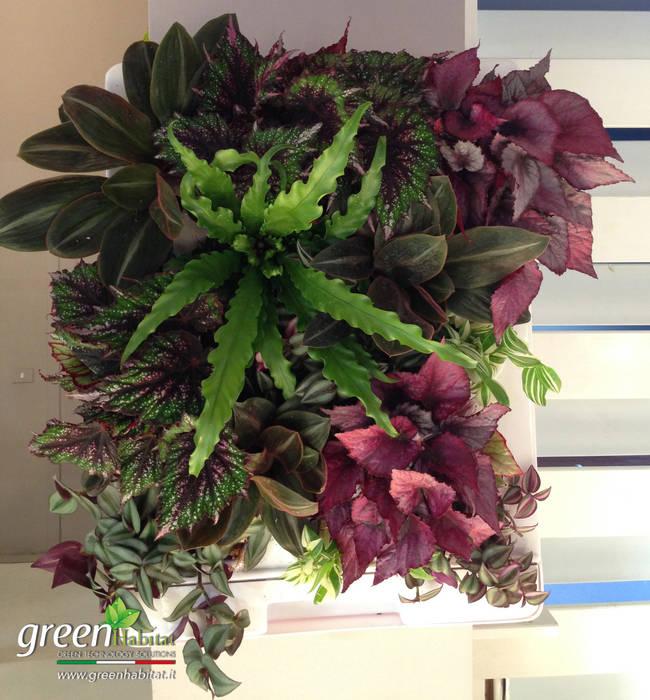 FIORIERA VERDE VERTICALE: Cucina attrezzata in stile  di Green Habitat s.r.l.