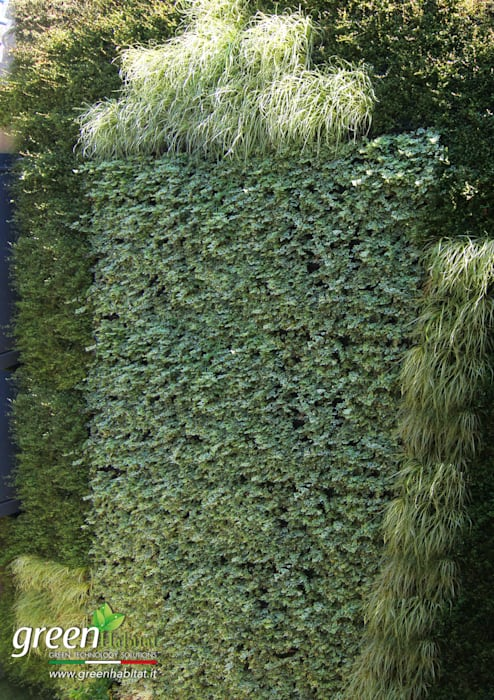 GIARDINO VERTICALE MOZZAFIATO: Giardino d'inverno in stile in stile Moderno di Green Habitat s.r.l.
