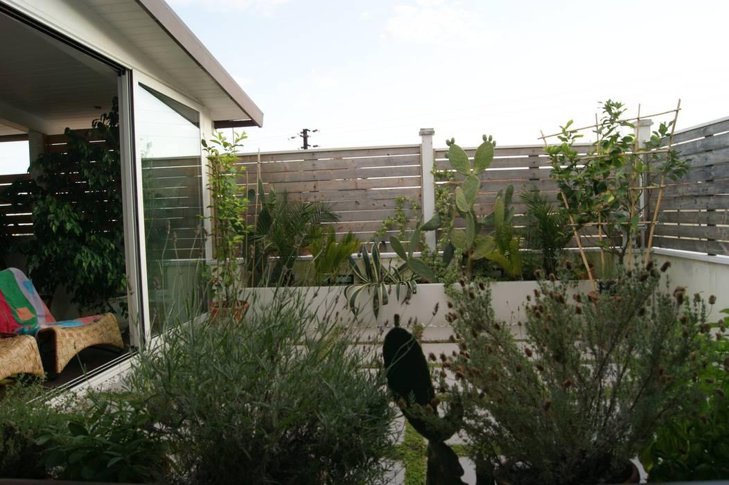 Zen garden by Della Bona & Fiorentini Studio di Architettura,
