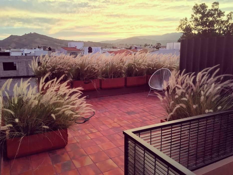 Roof garden: Jardines en la fachada de estilo  por Verde Lavanda,
