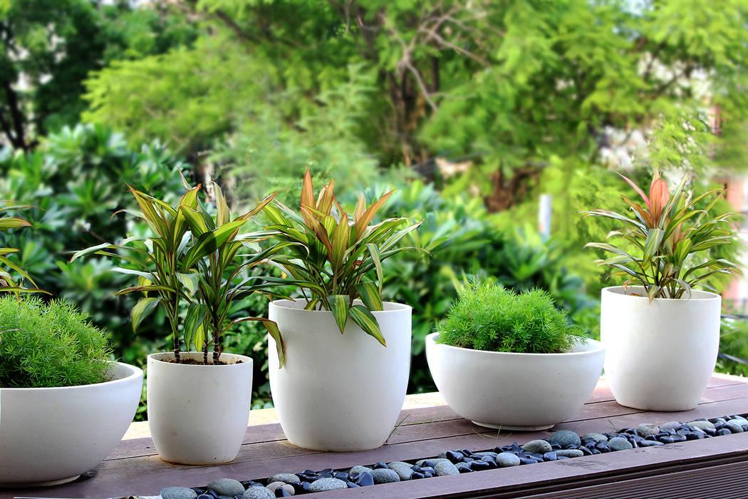 Zen Garden Deck:  Terrace by Grecor