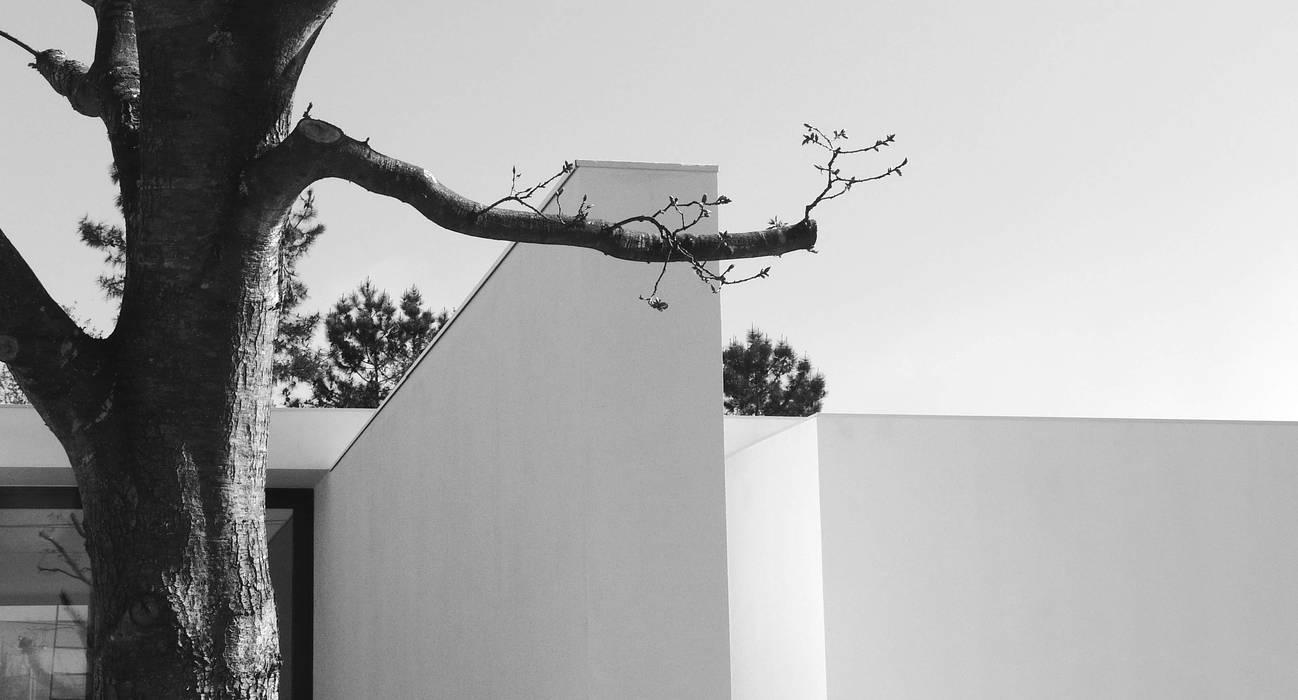 Pormenor da parede exterior: Moradias  por Atelier Vyasa
