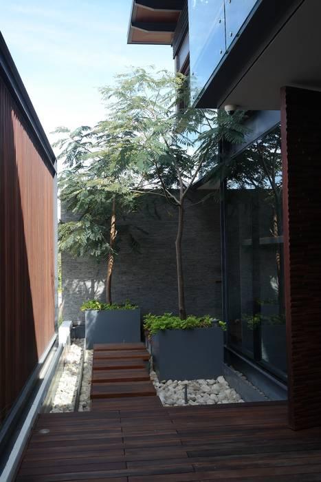 jardín interior de Verde Lavanda Moderno Madera Acabado en madera