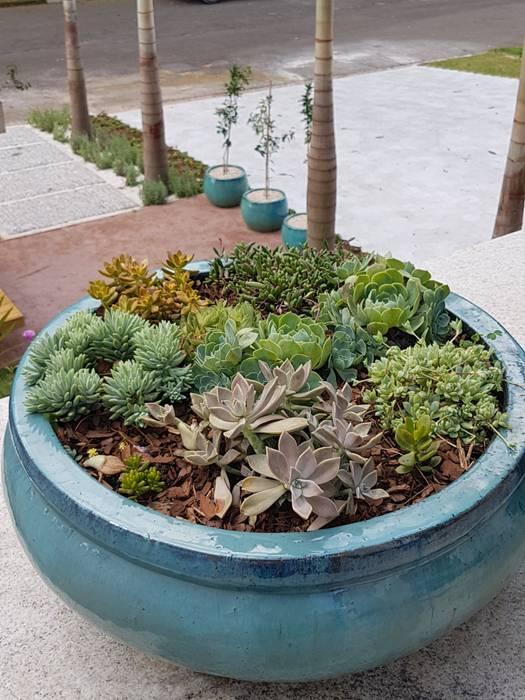 Oití Paisagismo Tropical style gardens