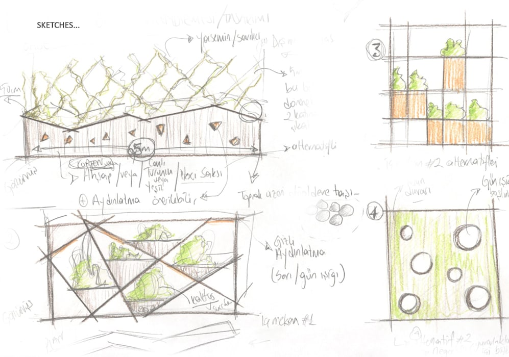Pil Tasarım Mimarlik + Peyzaj Mimarligi + Ic Mimarlik – Ofis Ic Mekan Peyzaj Projesi :  tarz Bahçe, Tropikal