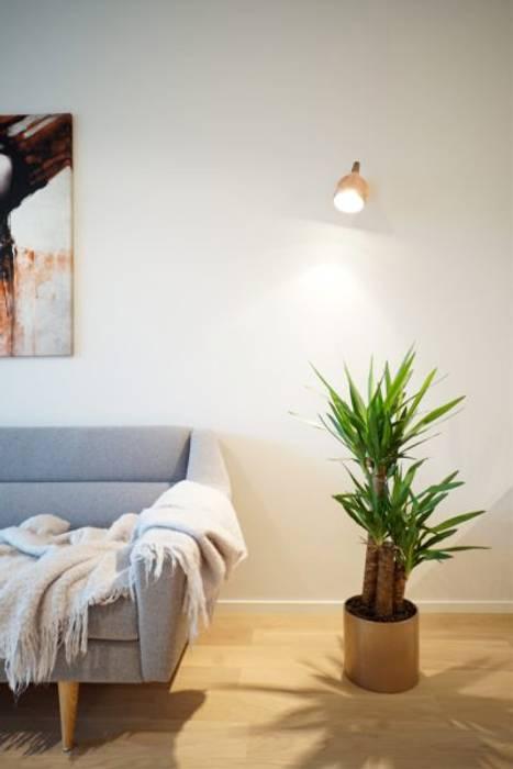Wohnzimmer Skandinavisch Mit Grauem Sofa Wohnzimmer Von Baltic