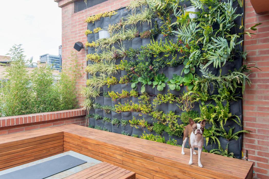 22-106 Jardines de estilo minimalista de ARCE S.A.S Minimalista Ladrillos