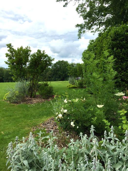 Rosa rosa rosam...: Jardin de style de stile Rural par Paradeisos conception de jardin