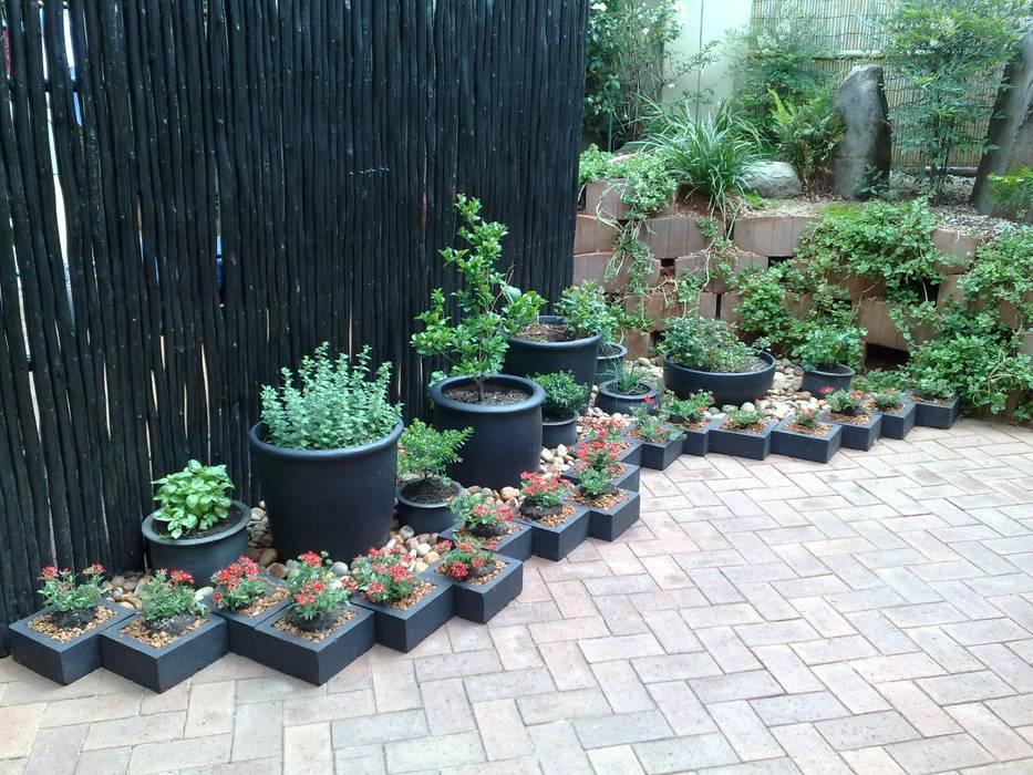 GASPARI Asian style garden by Japanese Garden Concepts Asian