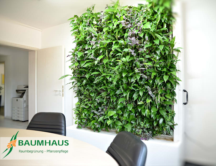 Grüne Wände im Büro oder die BAUMHAUS - Stand-Alone Pflanzwand Moderne Krankenhäuser von BAUMHAUS GmbH Raumbegrünung Pflanzenpflege Modern