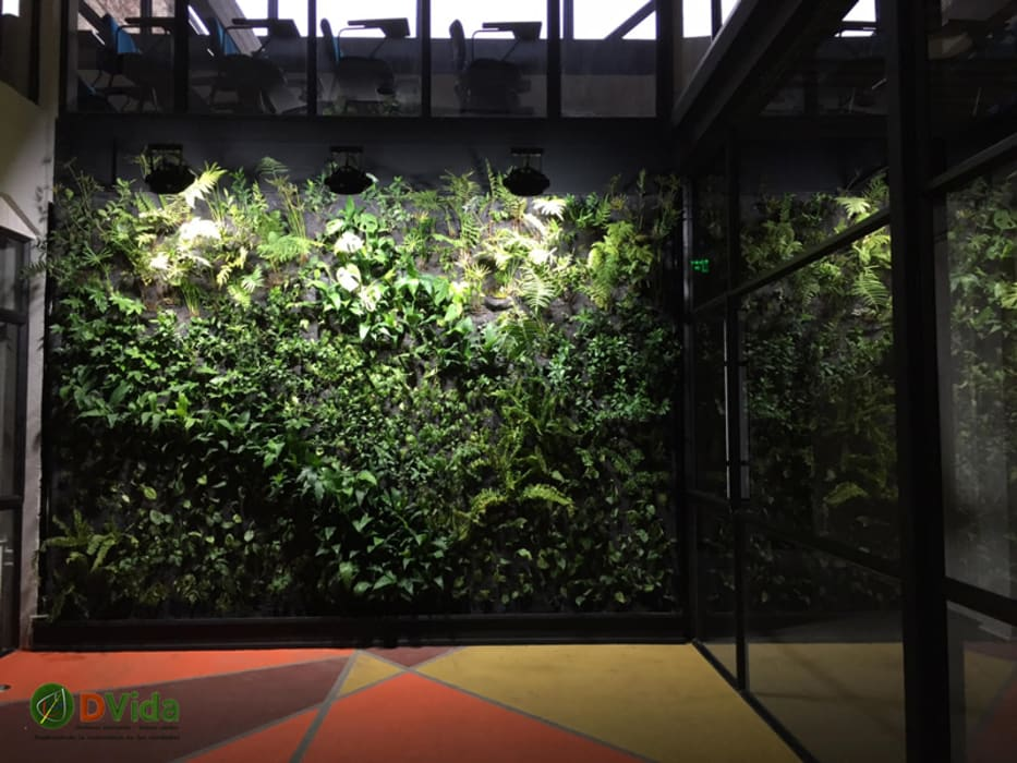 Muros verdes DVida Oficinas y bibliotecas de estilo rural de DVida Jardines verticales Rural