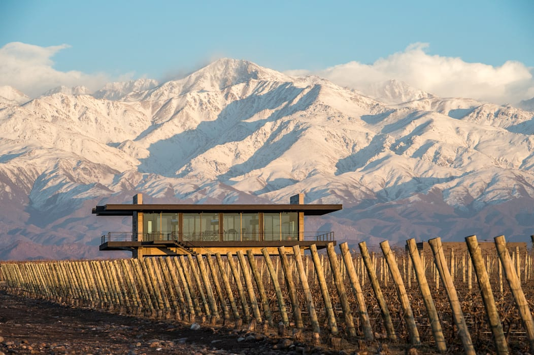 The Vines Resort & Spa   Gym : Hoteles de estilo  por Bórmida & Yanzón arquitectos