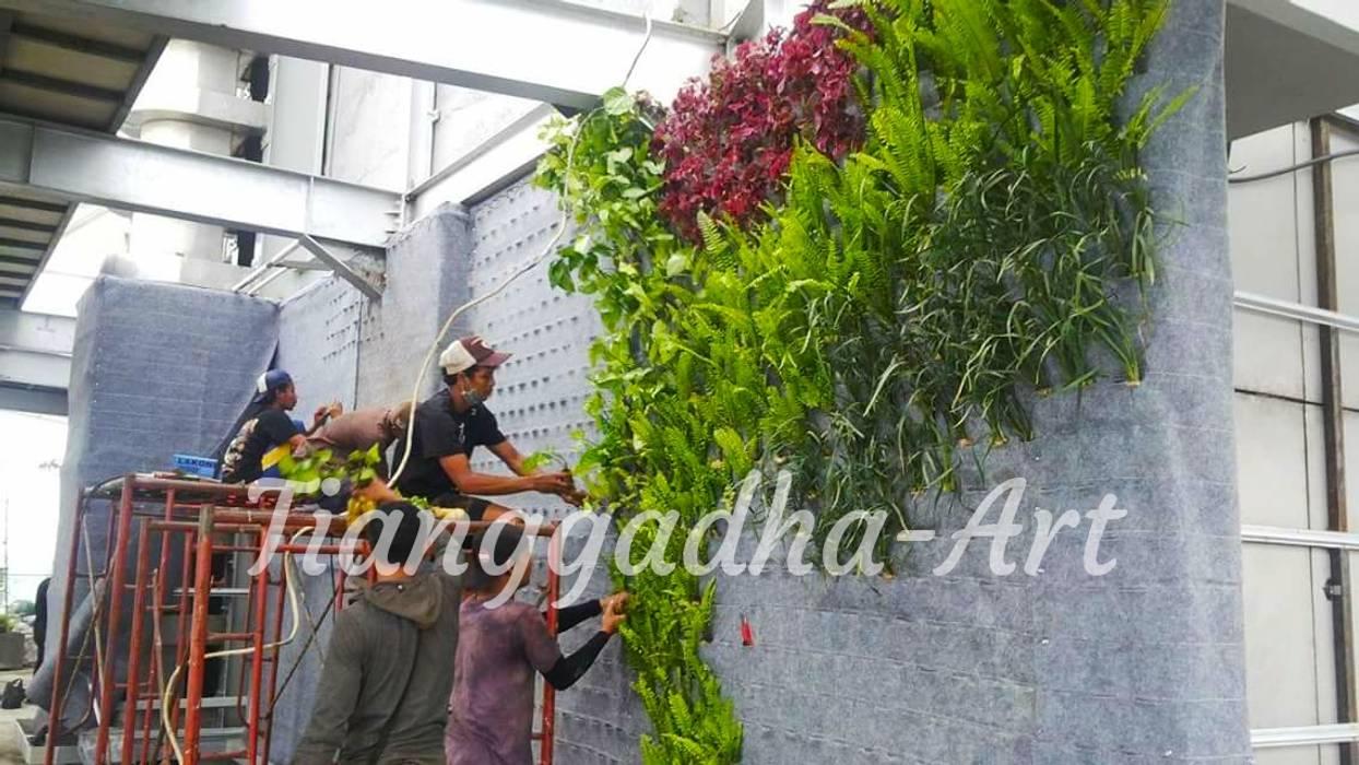 Proses penanaman tanaman Oleh Tukang Taman Surabaya - Tianggadha-art Modern Aluminium/Seng
