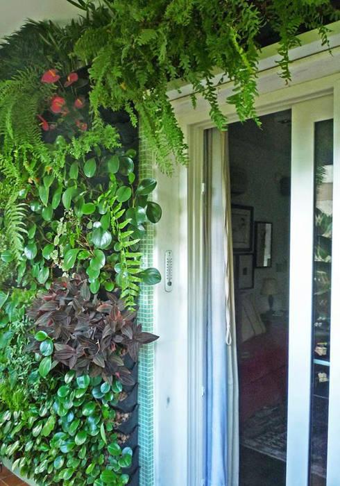 Jardins verticais. por Raul Hilgert Arquitetura de Exteriores Tropical