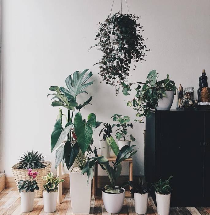 Decoración vegetal para residencia de Marga Moderno Cerámica