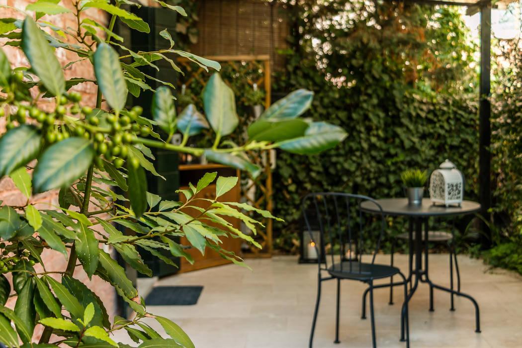 Relooking per locazione turistica IN GIALLO E BLU - Venezia: Giardino anteriore in stile  di MICHELA AMADIO - Valorizza e Vendi , Asiatico