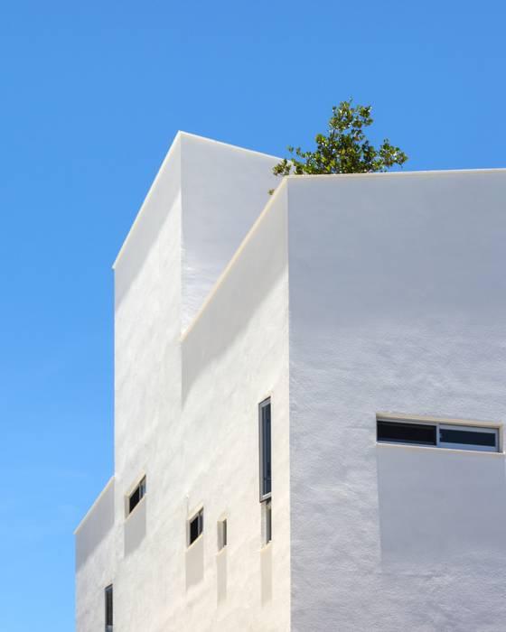劉宅照片 良悅建築 現代房屋設計點子、靈感 & 圖片
