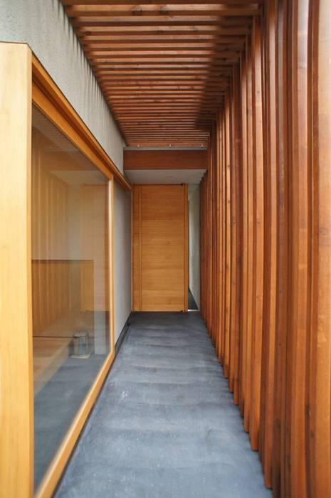 変形旗竿地に建つアトリエのある家 一級建築士事務所A-SA工房 モダンスタイルの 玄関&廊下&階段 木 木目調
