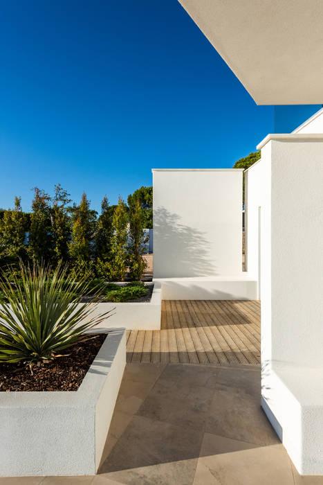 Casa Salicos Paredes e pisos modernos por dacruzphoto Moderno