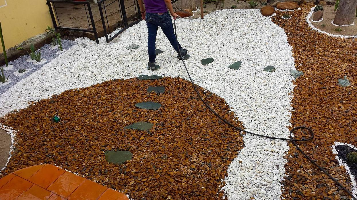 Jardín Xerofilo: Jardines de piedra de estilo  por Globo Natural