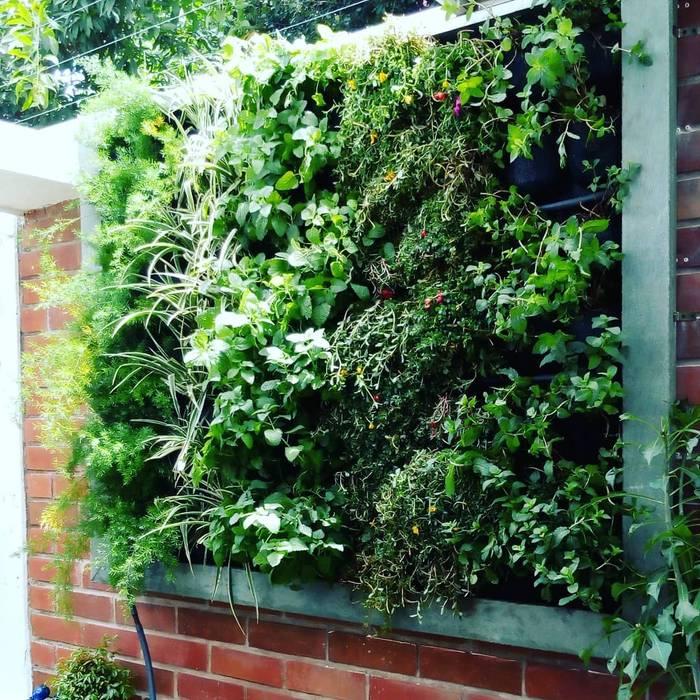 Jardines Verticales: Paredes de estilo  por Globo Natural