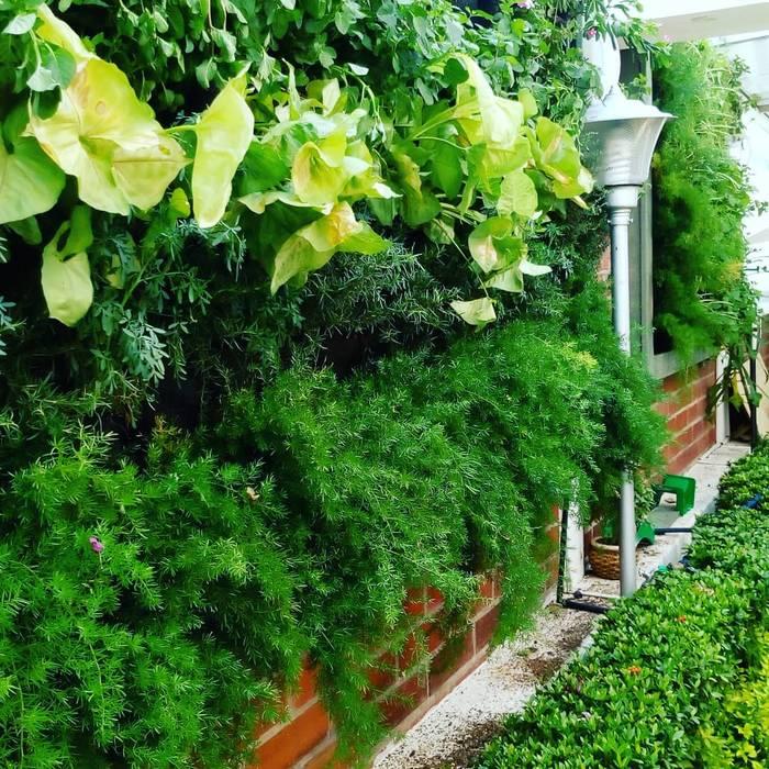 Jardines Verticales: Conjunto residencial de estilo  por Globo Natural