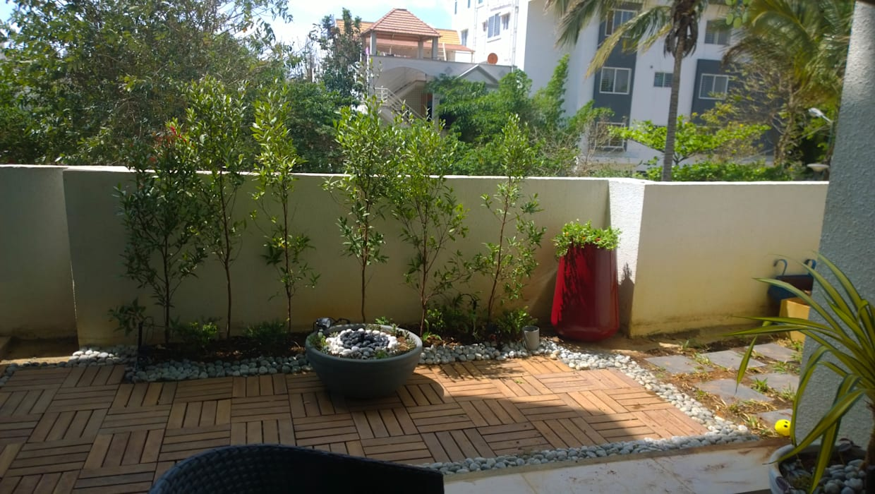 Tropical style garden by homify Tropical