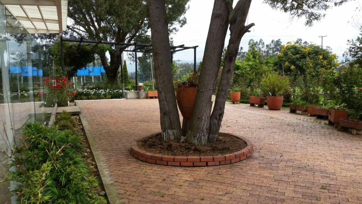 Remodelación de Pescadero: Jardines de estilo  por Artekpro, Tropical