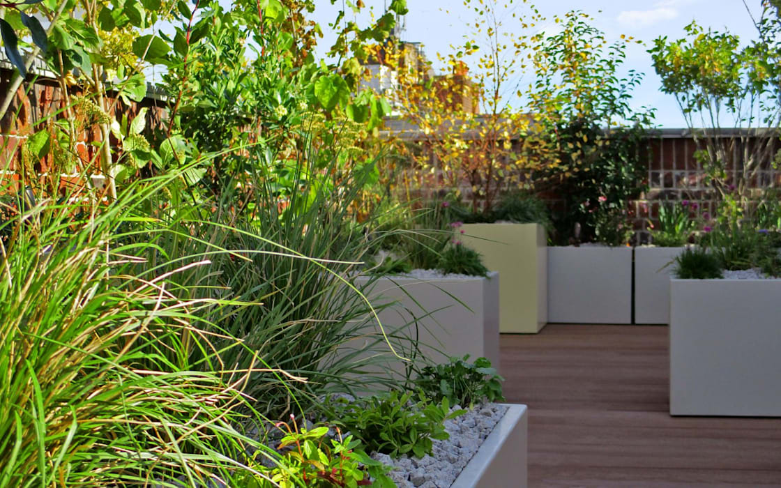 Lushly Planted New Roof Terrace Ec1n By Mylandscapes Garden Design