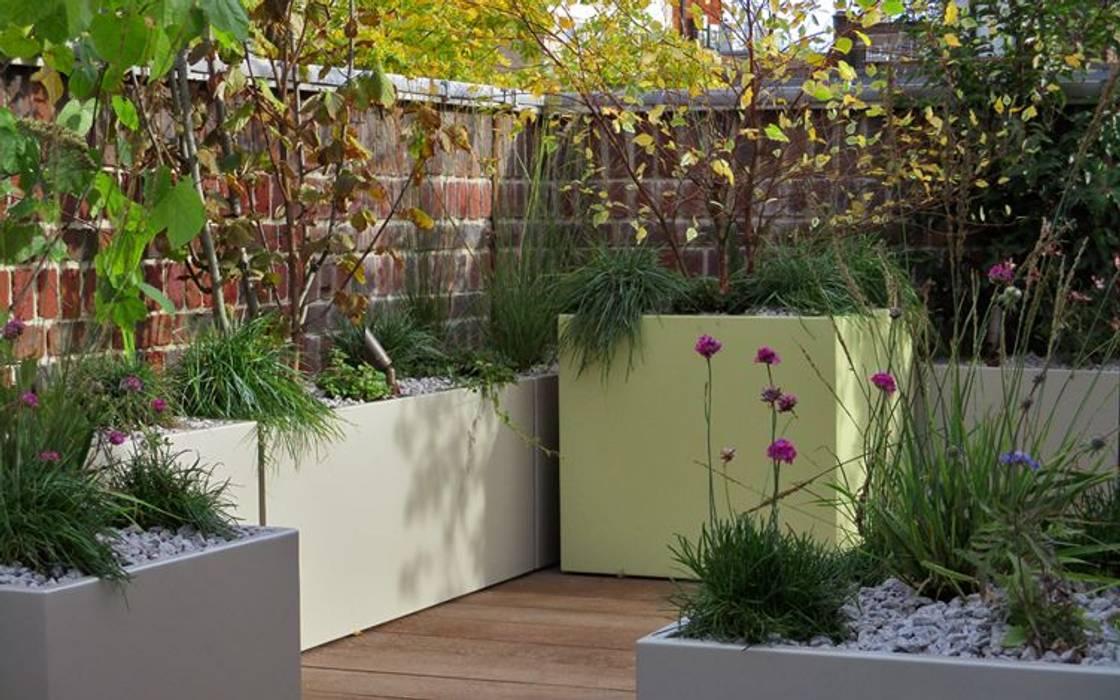 Modern Roof Garden By Mylandscapes Garden Design Modern Homify