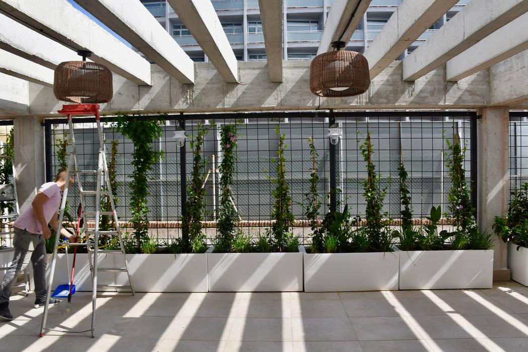 VARIOS Jardines de estilo moderno de Marta Puig de la Bellacasa Moderno