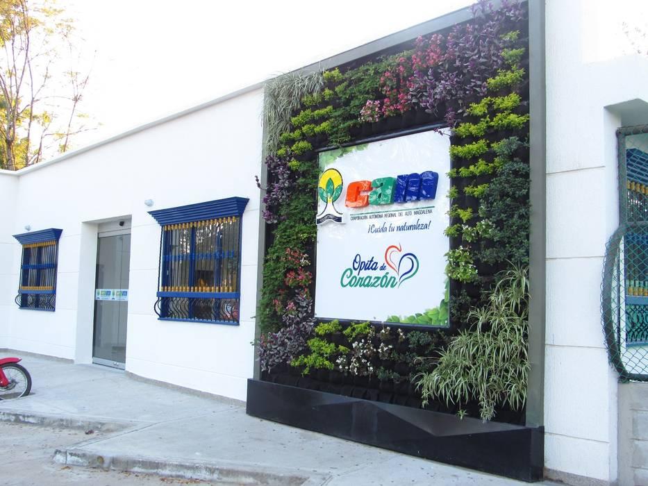 Jardin Vertical en Fachada de la CAM con mucha Radiación Solar: Jardines frontales de estilo  por Globo Natural