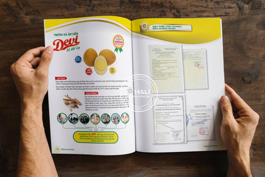 Thiết kế profile Công ty IDB:   by Thiết kế catalogue