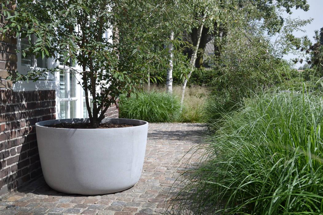 Field emotion:  Garden by Andredw van Egmond  |  designing garden and landscape