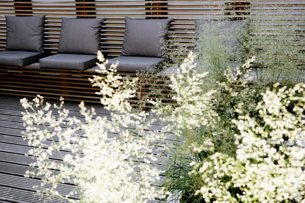 Patio garden Modern gym by Andredw van Egmond | designing garden and landscape Modern