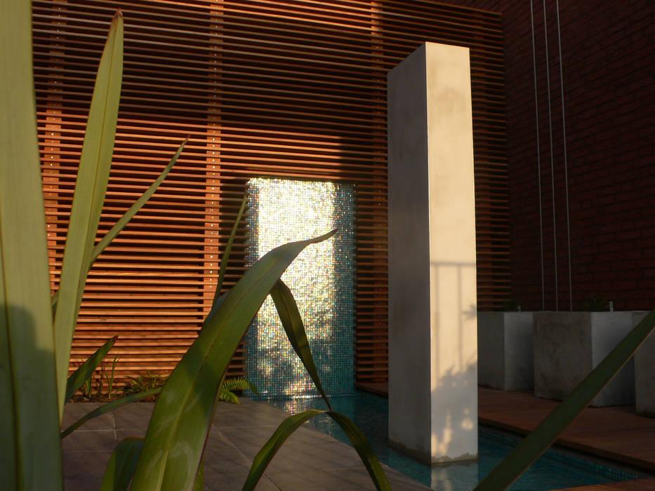 Patio garden Modern Garden by Andredw van Egmond | designing garden and landscape Modern