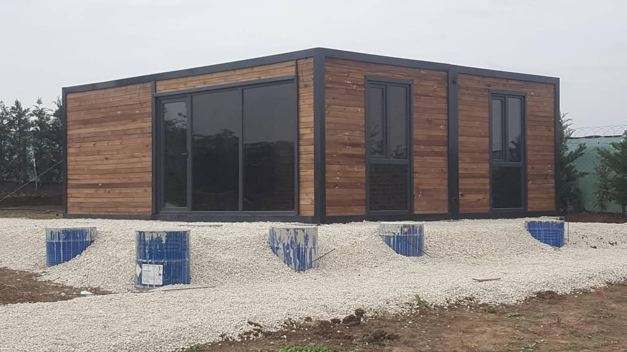 MOVİ evleri Log cabin
