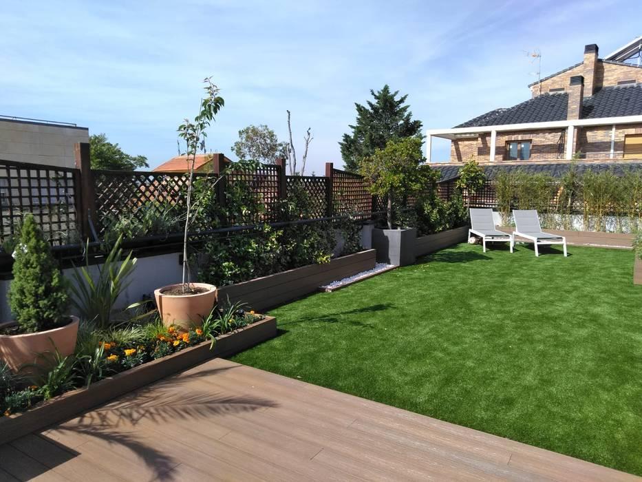 Rehabilitación De Terraza En Una Casa De Madrid Jardines De
