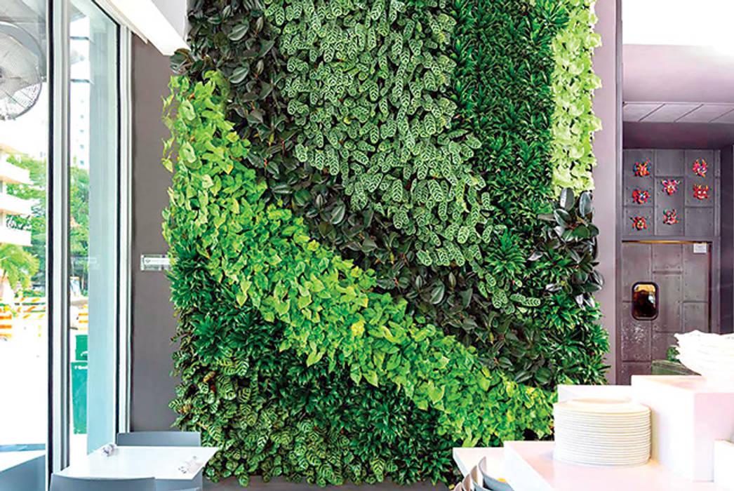 Taman dinding Dinding & Lantai Tropis Oleh Jasa tukang taman gresik Tropis Bambu Green