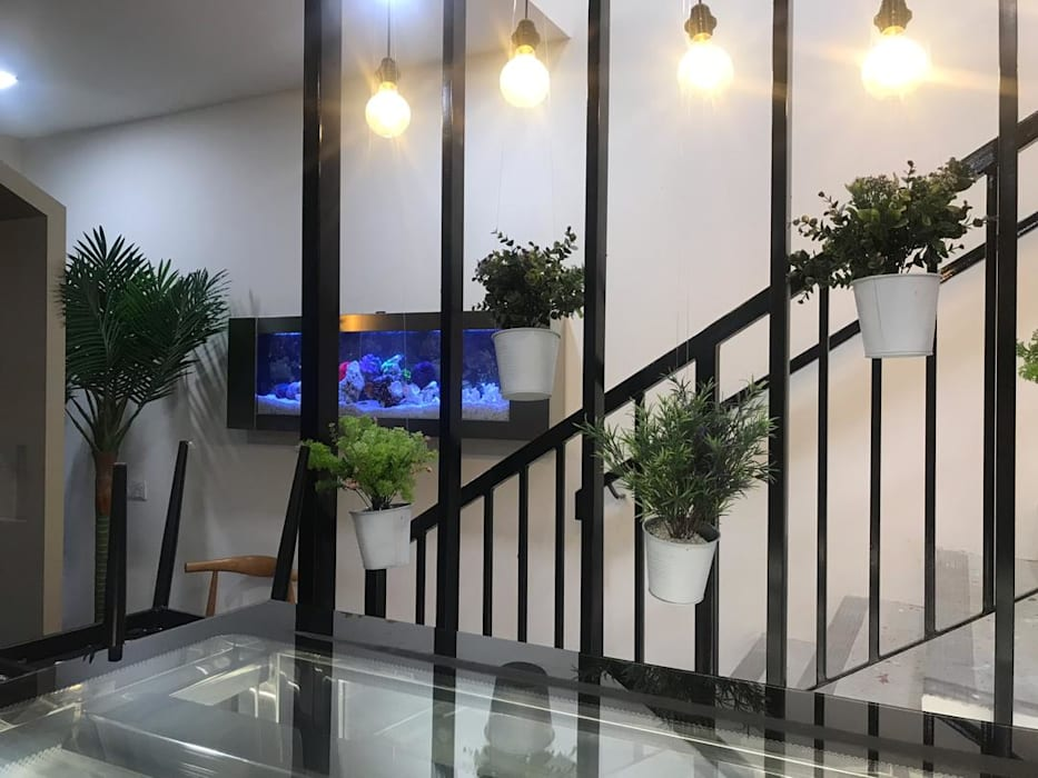 Ultimate Low Maintenance Aquarium Modern walls & floors by Seazone Innovative Sdn Bhd Modern