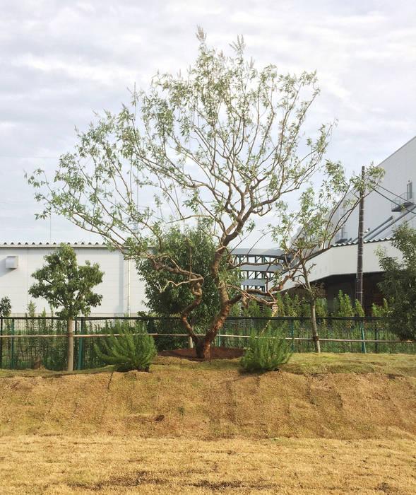 (有)ハートランド Eclectic style garden