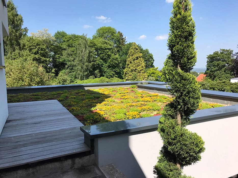 METZ- toiture végétalisée: Toit-terrasse de style  par MIAMI DESIGN / ERIC TOURAILLE CREATIONS, Moderne