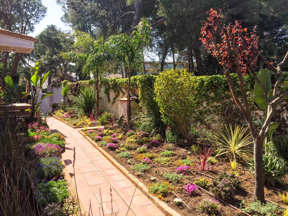 Vista general entrada principal Jardines de estilo tropical de Nosaltres Toquem Fusta S.L. Tropical