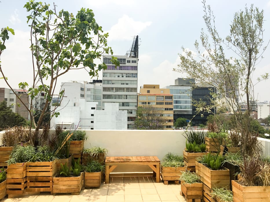 Terrace by Boceto Arquitectos Paisajistas, Modern Wood Wood effect