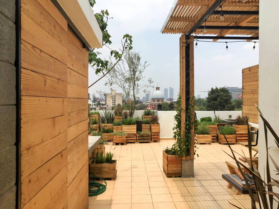 Acceso: Terrazas de estilo  por Boceto Arquitectos Paisajistas, Moderno