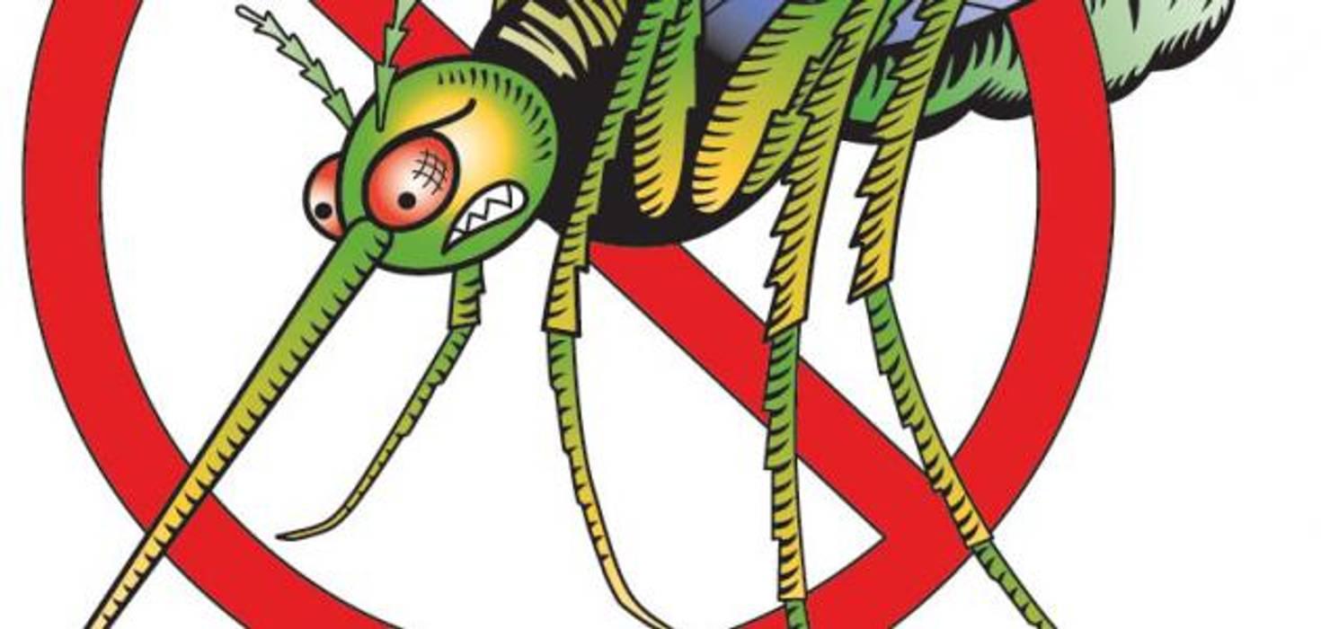 شركة مكافحة حشرات شمال الرياض:  شركات تنفيذ شركة ورود الرياض 0551018445